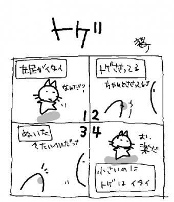 200415