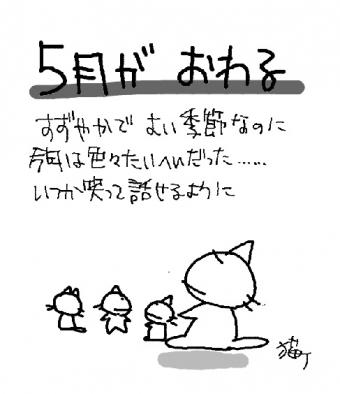 200531